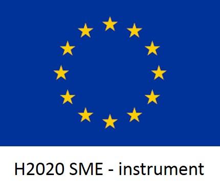 logo 2020 SME - Instruments